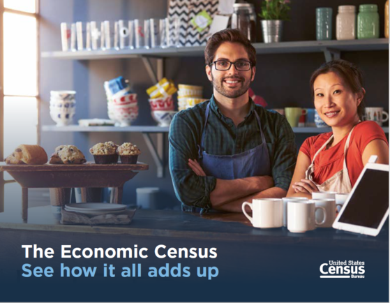 The Economic Census - See how it all adds up