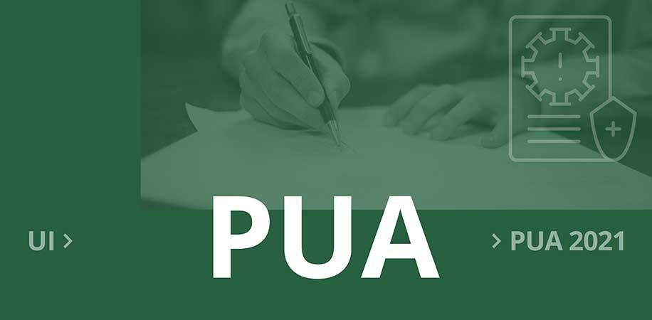 Initial application for Pandemic Unemployment Assistance (PUA)